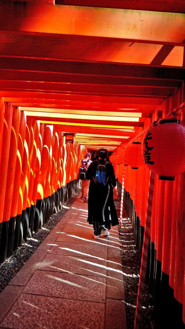 京都の伏見稲荷大社の鳥居