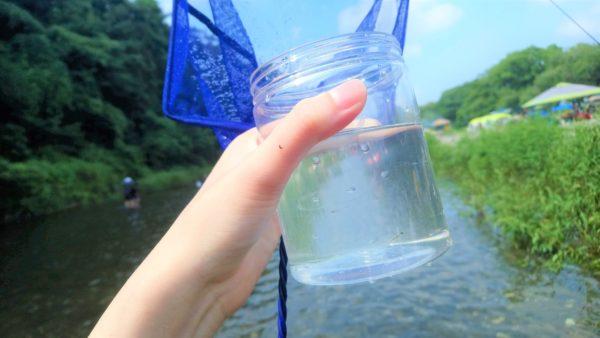 高麗川で魚取りのために魚取網とボトルを持っている