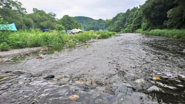 高麗川の巾着田で川の中に入った