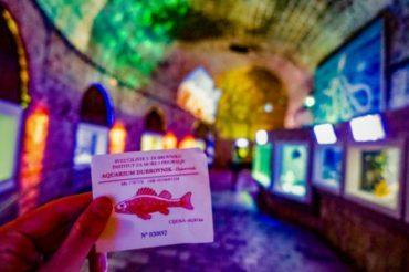 クロアチアのドブロブニクにある城壁の中の水族館のチケット