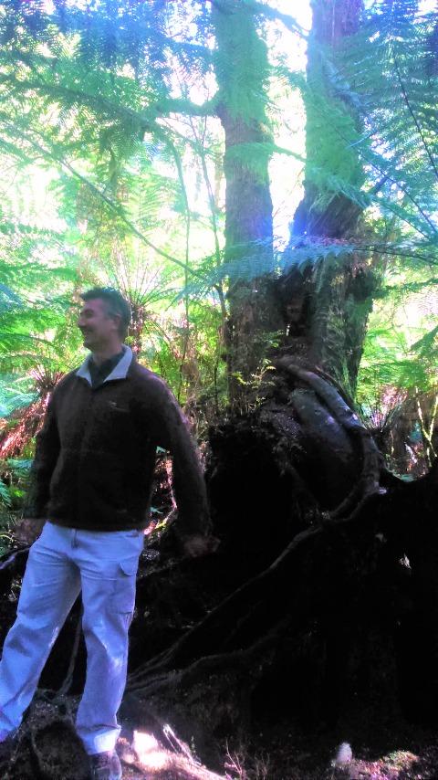 グレートオトウェイ国立公園とガイドさん