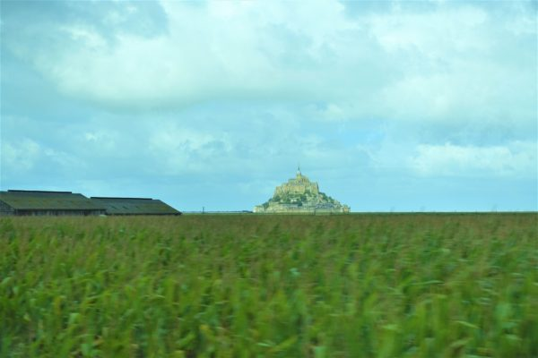 牧草とモンサンミッシェル
