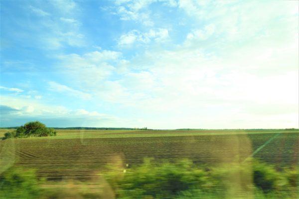 高速道路から見えた美しい牧草地帯