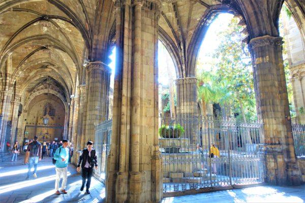 バルセロナのカテドラル(サンタ・エウラリア大聖堂)の中庭