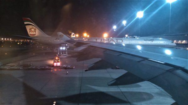 エティハド航空機のカラーリング