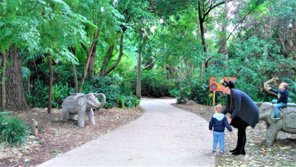 オーストラリアのメルボルン動物園のゾウ